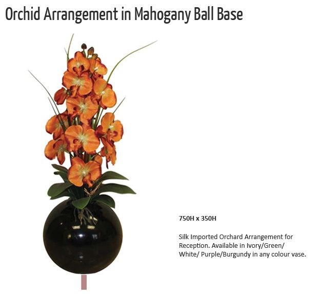 orchid arrangement in mahogany ball base
